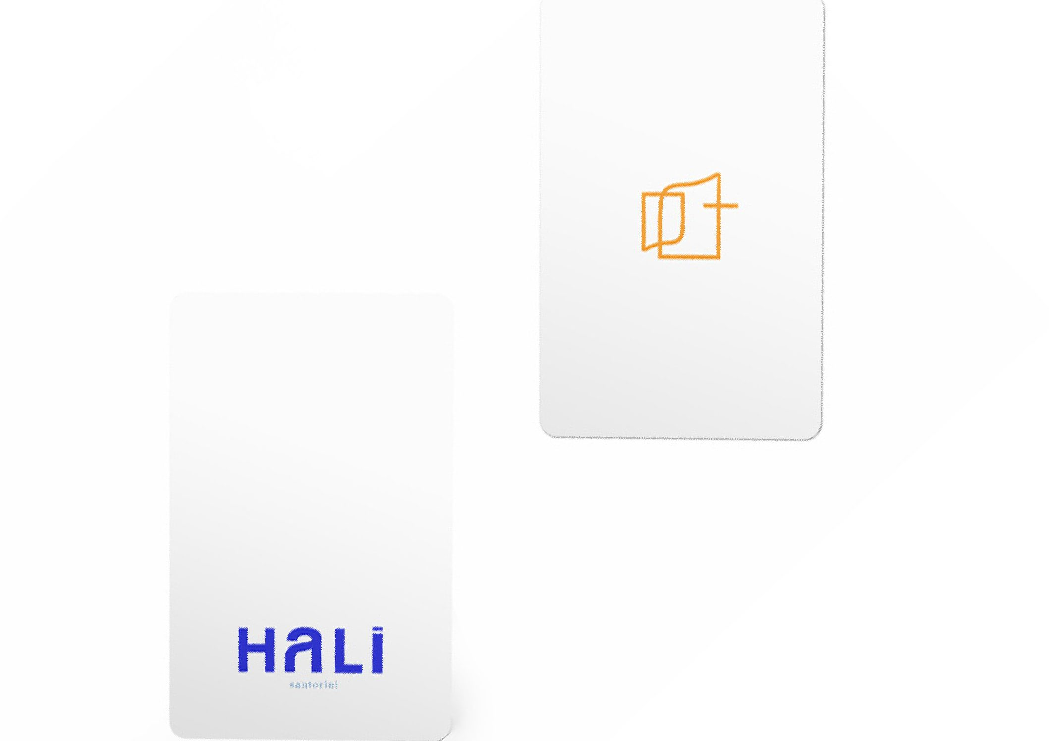 hali21