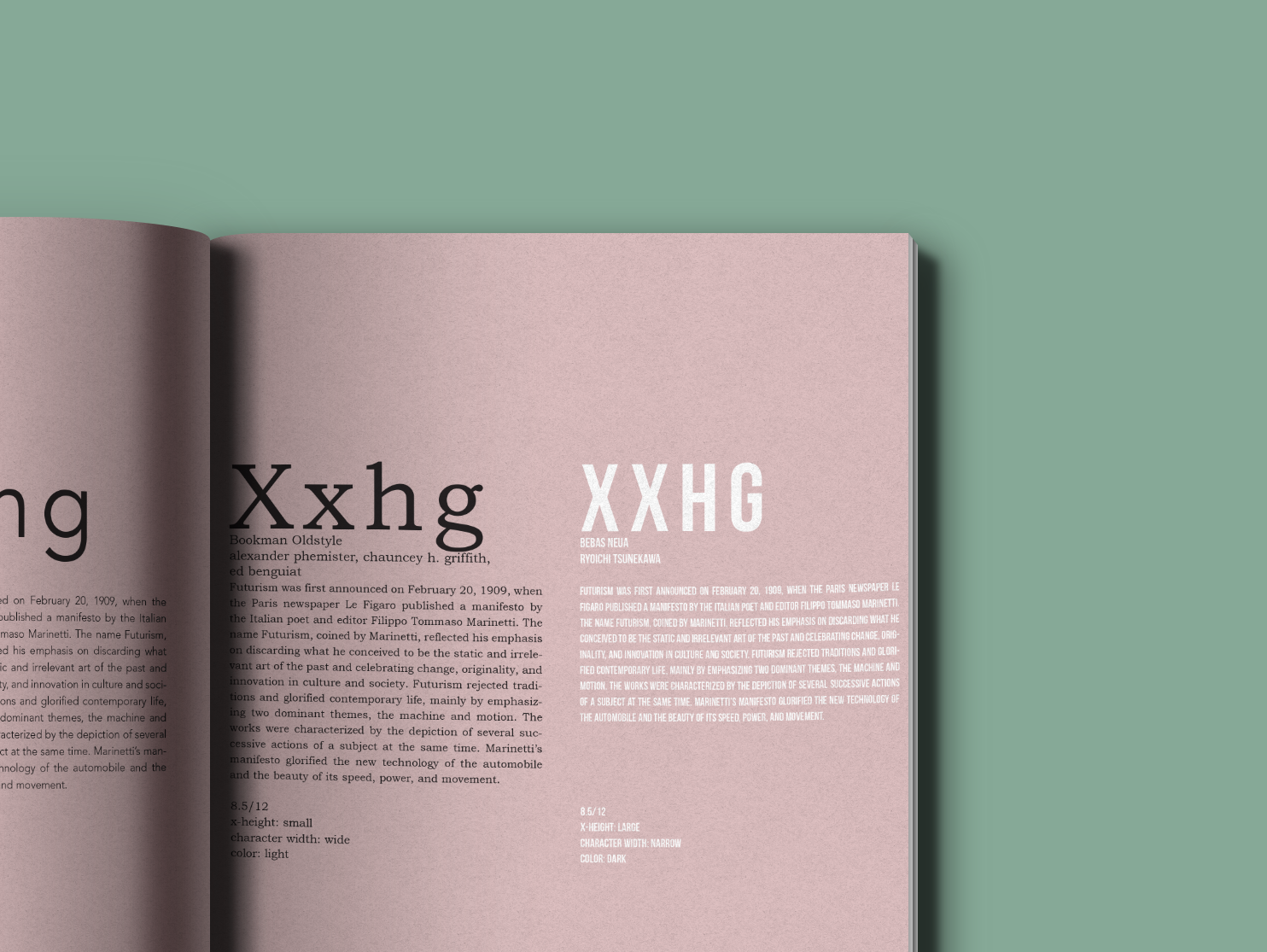 letters font book type mockup